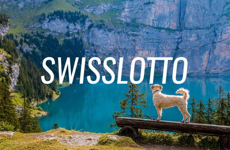 Schweizer Lotto in Rekordhöhe: wo gibt es das Swisslos in
